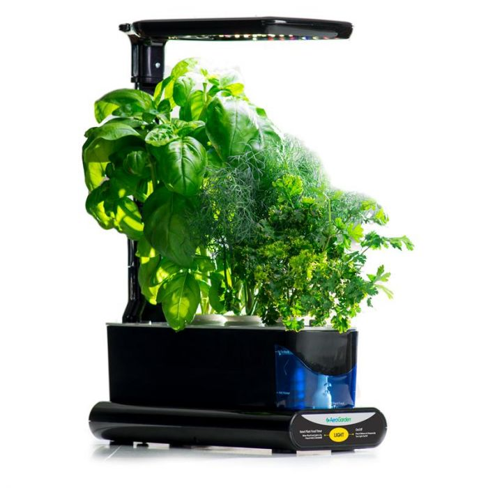 AeroGarden Sprout LED Review