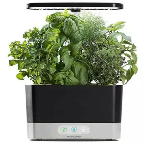Super Easy Ways to Learn Everything About AeroGarden Harvest 360