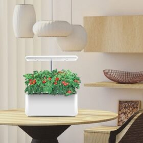 HomeJoy Hydroponic Gift Is Bound To Make An Impact In Any Home